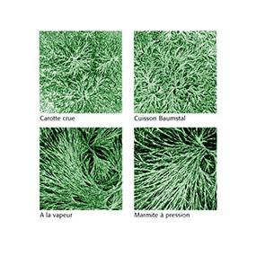La cristallisation sensible : comparaison de 3 cuissons avec les légumes crus