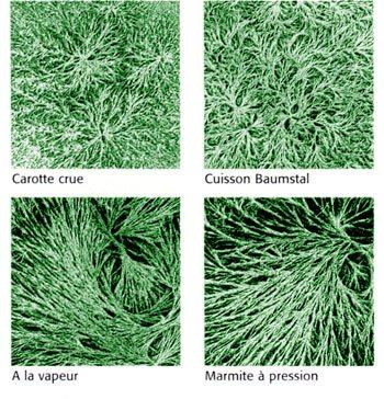 La cristallisation sensible : comparaison de 3 modes de cuisson par rapport à l'aliment cru.